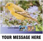 2021_garden_birds_cvr