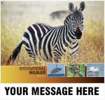 2021_international_wildlife_cvr