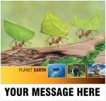 2021_planet_earth_cvr